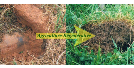 Comment préserver le sol et réduire le temps de travail ?