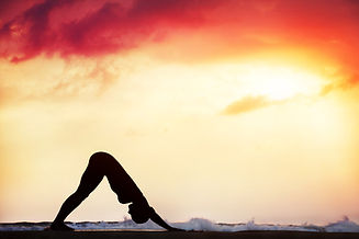 Step of surya namaskar, downward facing