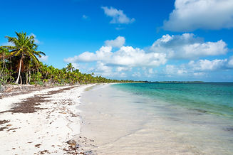Beautiful deserted Caribbean beach in th
