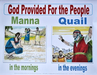 Family Activities Moses and Manna