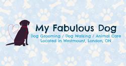 My Fabulous Dog