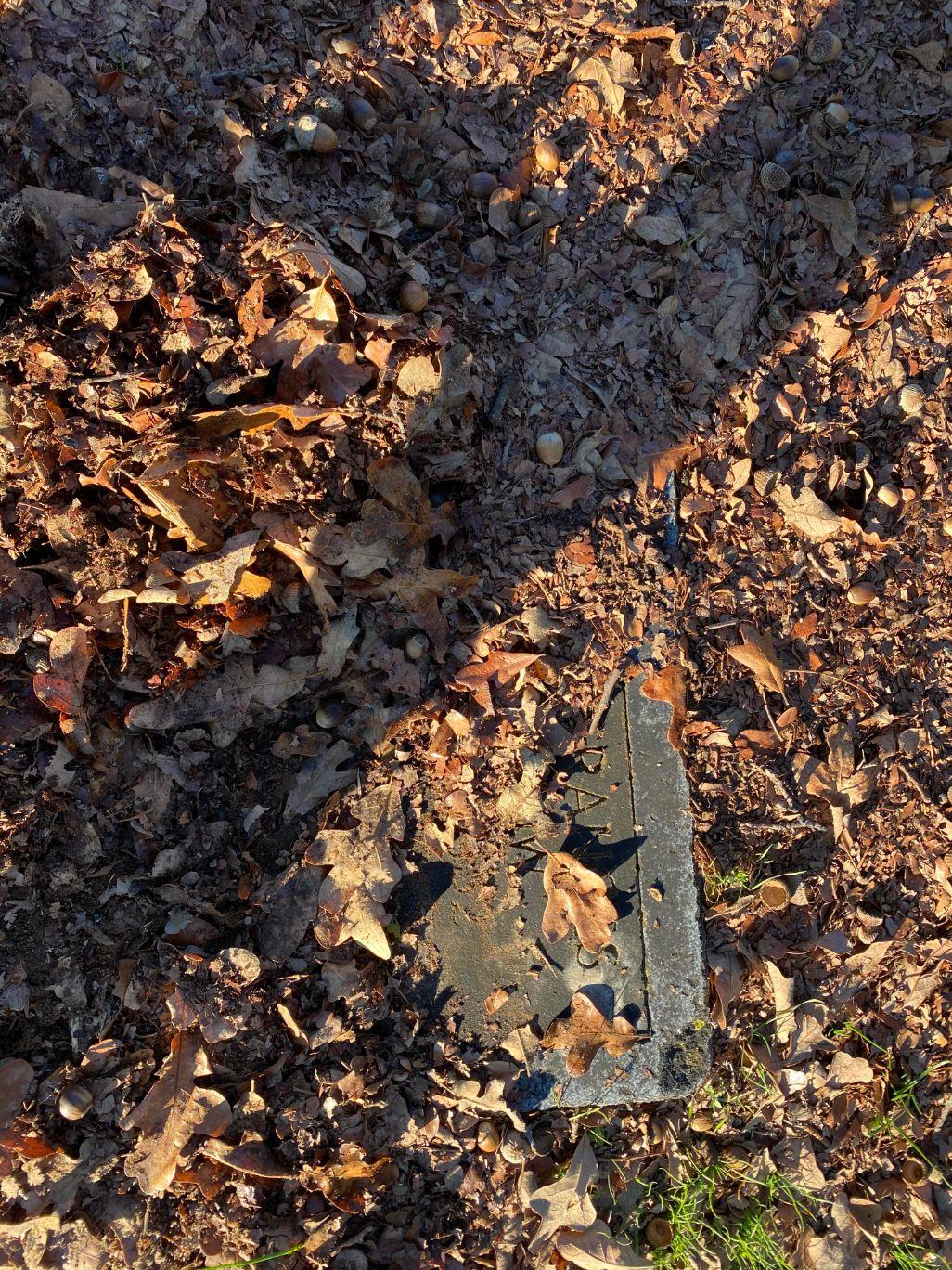 Leaf Covered Grave
