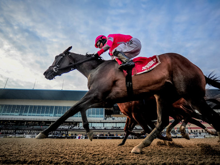 CPA / Tax firm Dean Dorton to Sponsor TAX in Kentucky Derby & Triple Crown Races