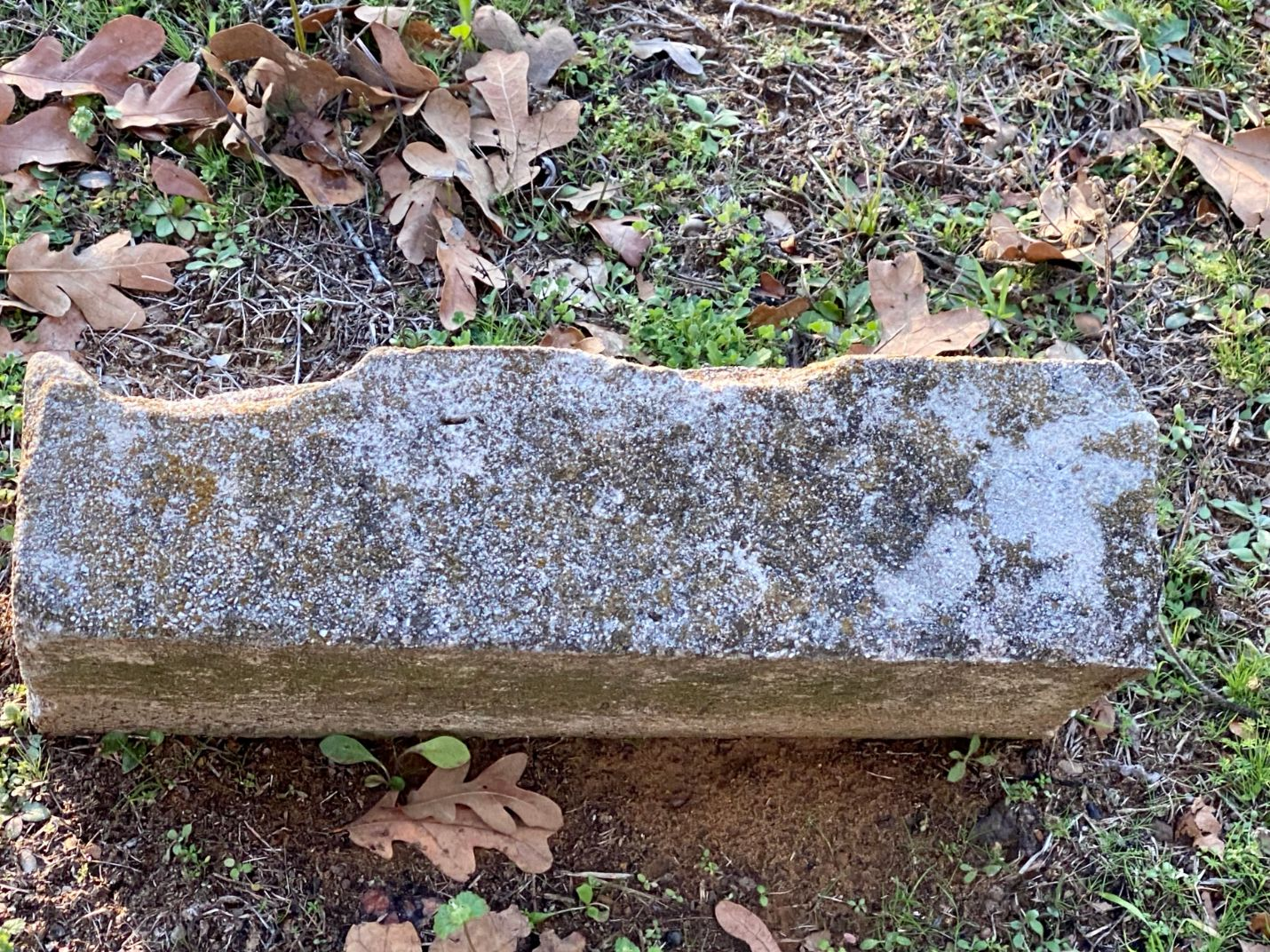 Unknown Grave 1