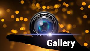Starting Gate Marketing Gallery