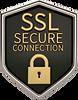 SSL Secure Certificate Badge