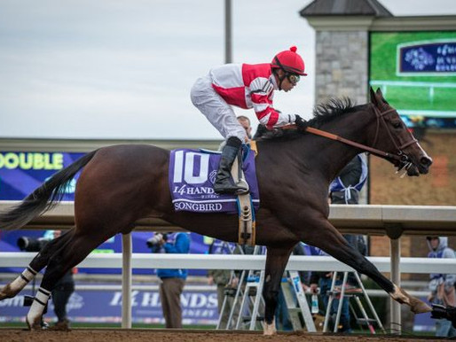 The Breeders' Cup in Photos: Saturday