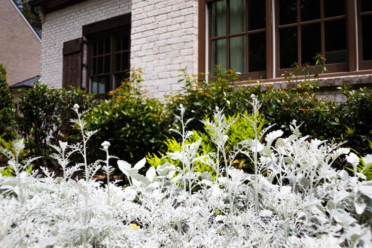 RLB Landscape Group White Flowers