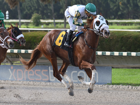 LIAM LETS GO with Convincing Maiden Win for Reeves Thoroughbred Racing
