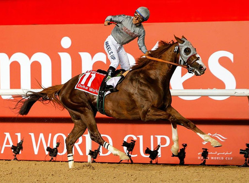 California Chrome to partner with The V Foundation for cancer research