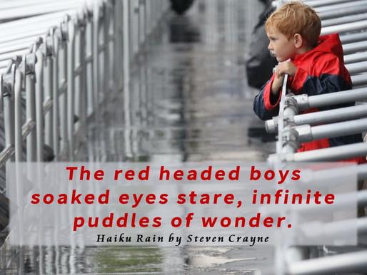 Haiku Rain