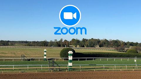 Zoom on Track.jpg