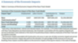 Summary of Economic Impact.JPG