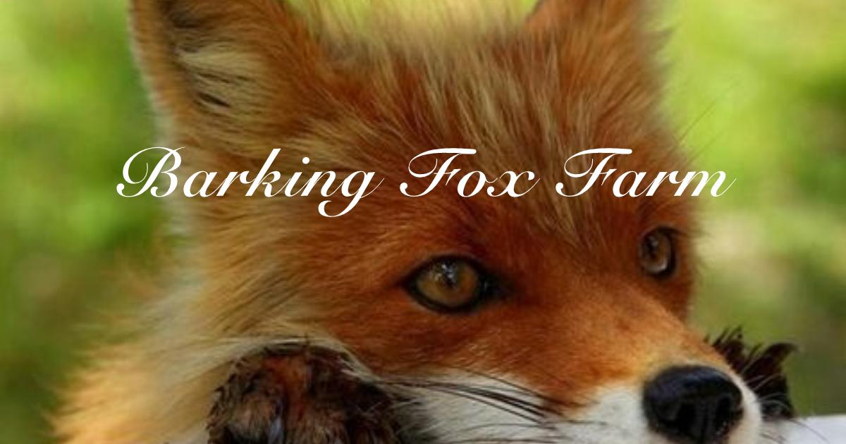 Barking Fox Farm