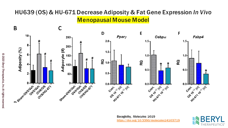Menopausal Mouse Model 2.png