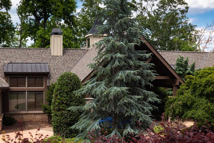 Residential Landscaping Lake House