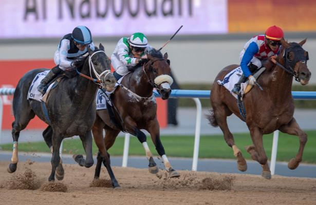 Plus Que Parfait Wins UAE Derby
