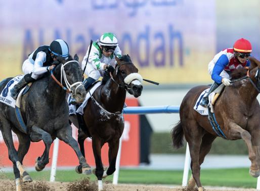 Atlanta businessmen's horses to race in Kentucky Derby