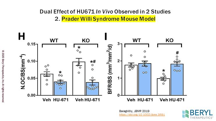Prader Willi Syndrome Mouse Model
