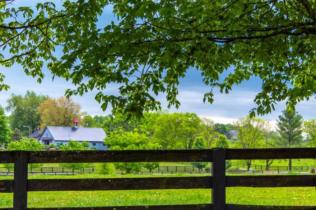 Oak Lodge USA Spring 2019
