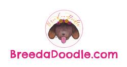 Pet Services Web Design