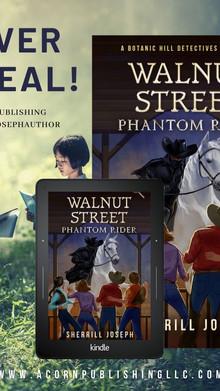 COVER REVEAL—WALNUT STREET: Phantom Rider
