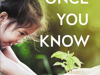 COVER REVEAL - Once You Know