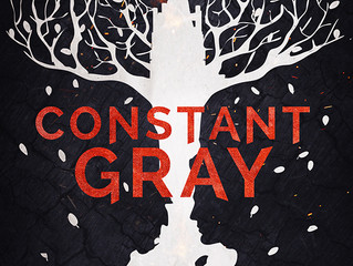 COVER REVEAL - Constant Gray by Ryan Taylor