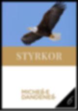 Identifieringsfasen_kurs-6-styrkor_-_Per