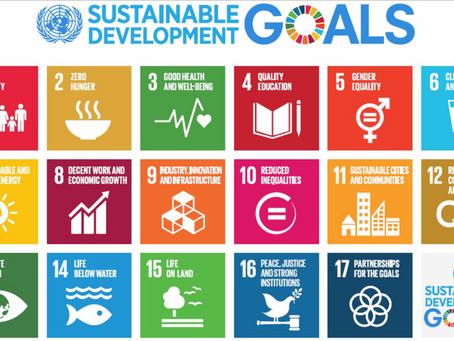 Vad skulle hända om vi la till hållbara tanke- och känslomönster, till SDG?