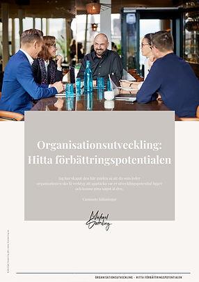 Guide; Organisationsutveckling