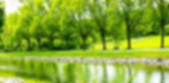 Header-FuturebookWalks_edited.jpg