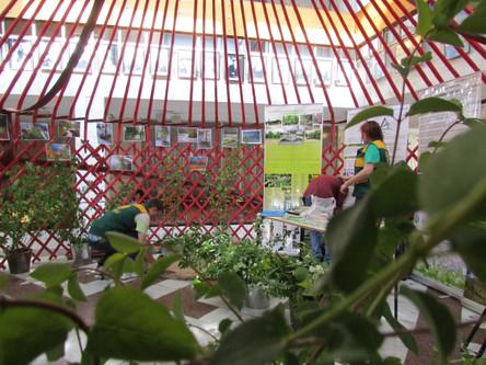 Jurte Licht bei Urban Forum in Bishkek