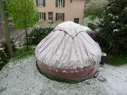 Schnee statt Filz