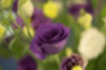 Screenshot 2020-05-03 11.56.55.png