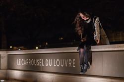 Carrousel du Louvre Exhibit