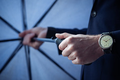 Pellikaan watches