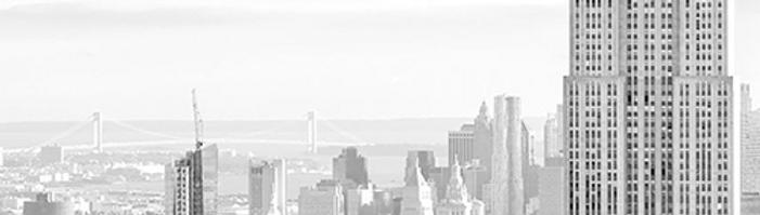 nyc skyline copy 2.png
