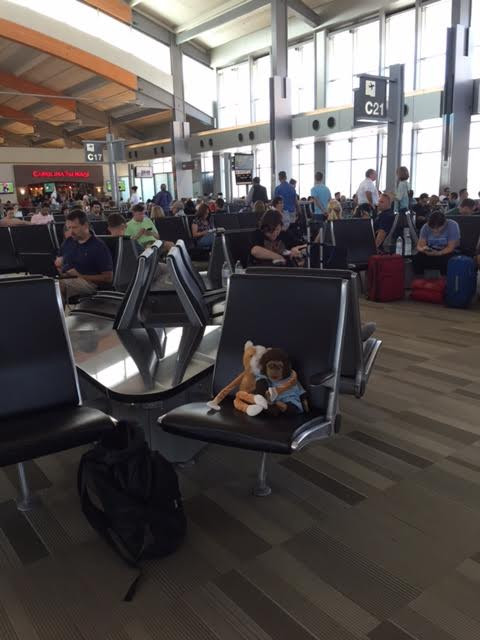 "Whiney Cat is feeling very proud! He and Kindermonkey are at gate C21 waiting for their flight to be called for Dallas Texas!  Nothing like sharing your dream ""about to come true"" with your very best friend!"