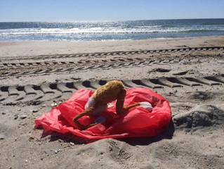 Yoga on the beach - last summer