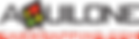 LOGO AQUILONE CAR WRAPPING.COM.png