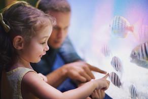 Νέο Σεμινάριο Επιμόρφωσης - Εξειδίκευσης Ειδικής Αγωγής   Τεστ Ανίχνευσης Μαθησιακών Δυσκολιών μέσω