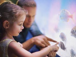 幼稚園小孩如何學科學?掌握8個關鍵就對了