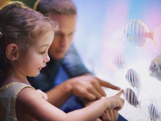 ששה כללי זהב לעיצוב חדר-שינה בטוח לילדכם! חלק שלישי בסדרת המאמרים: האלף-בית בעיצוב חדרי ילדים
