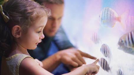 Νέο Σεμινάριο Επιμόρφωσης - Εξειδίκευσης Ειδικής Αγωγής | Τεστ Ανίχνευσης Μαθησιακών Δυσκολιών μέσω