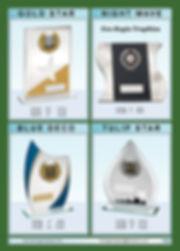AWARDS-15.jpg