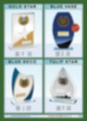 AWARDS-09.jpg