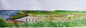 Ilse van Loo cursus aquarel.jpeg