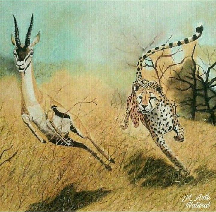 Lance de caza africano