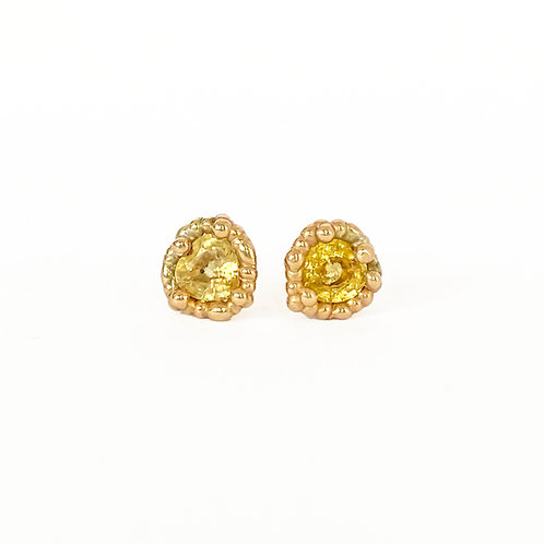 Yellow Sweetheart Studs